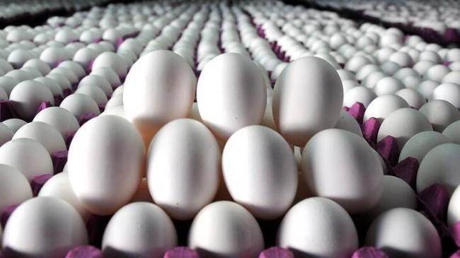 """Yumurta tüketimi """"karantina"""" etkisiyle arttı"""