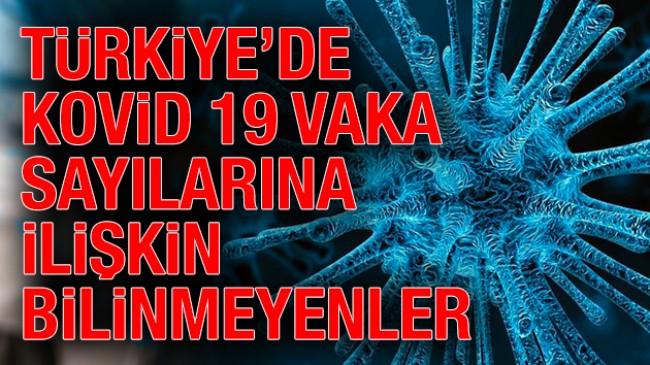 Türkiye'de koronavirüs vaka sayılarına ilişkin bilinmeyenler!